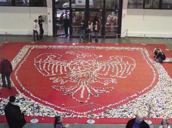 Canettes vides utilisées pour la création d'une fresque au sol à l'entrée de l'exposition