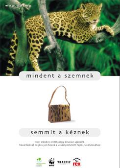 WWFHU_Leopard-4.jpg
