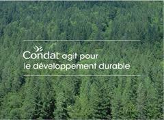 200612_Condat_DD.jpg