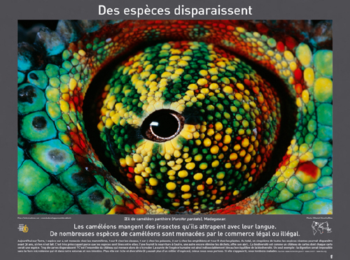 ExpoBiodiv4.jpg