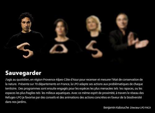 200709_LPO_Survolez-nous1.jpg