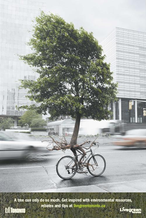 LiveGreenToronto_tree.jpg
