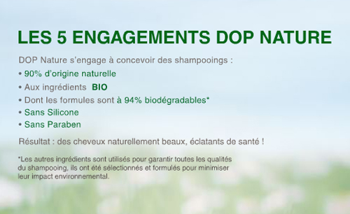 dop_web7.jpg