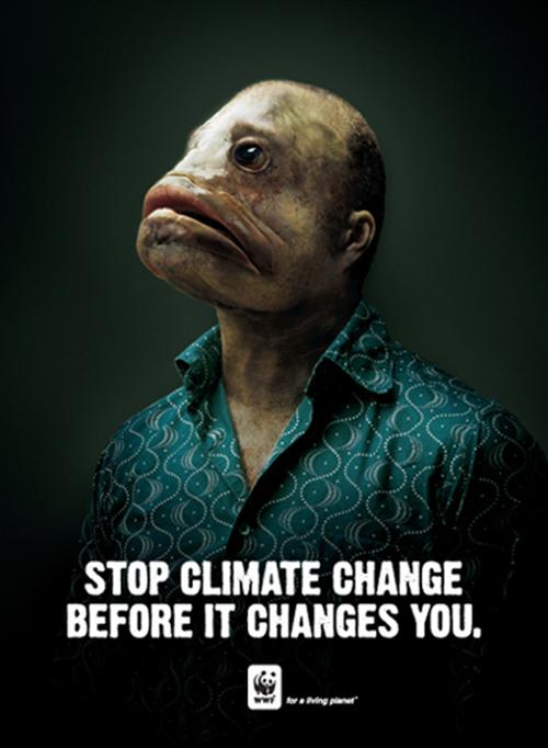 WWF-2008.jpg