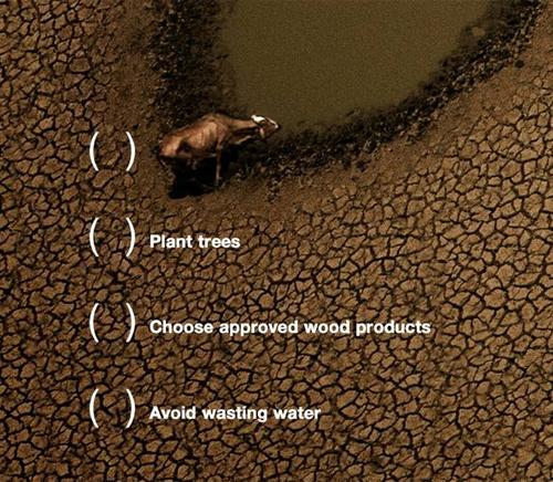 greenpeace5_zoom.jpg