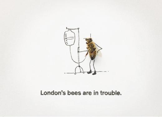 london-bees3.jpg