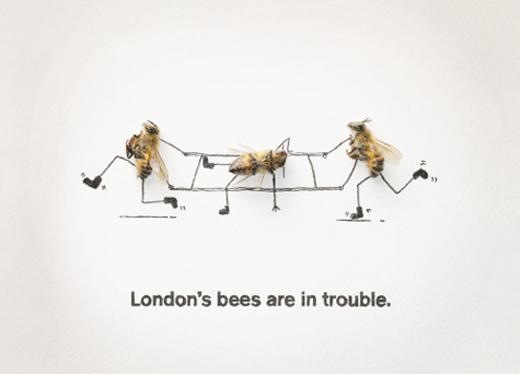 london-bees4.jpg