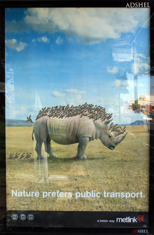 Nature prefers public transport