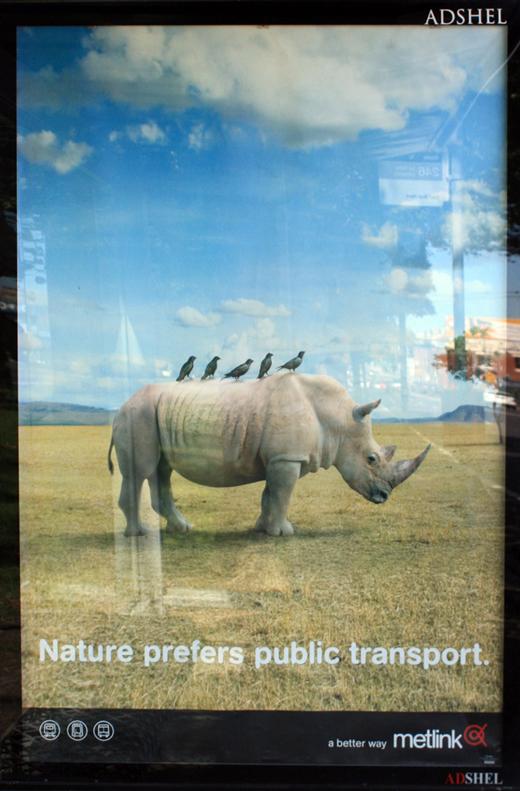 Nature prefers public transport