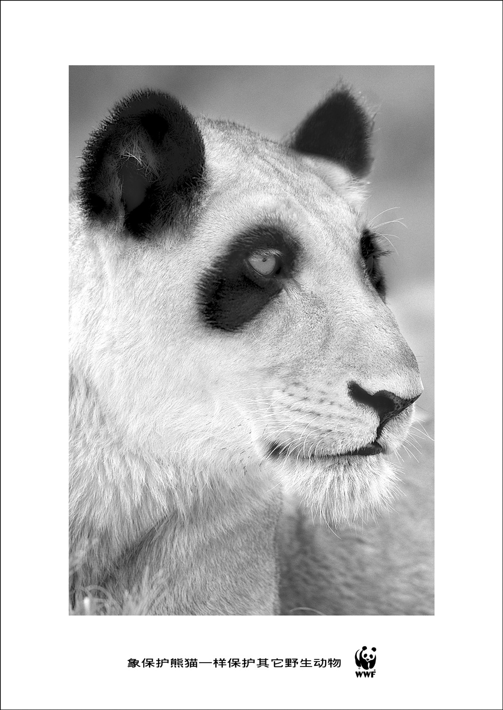 wwf_paint_lion.jpg