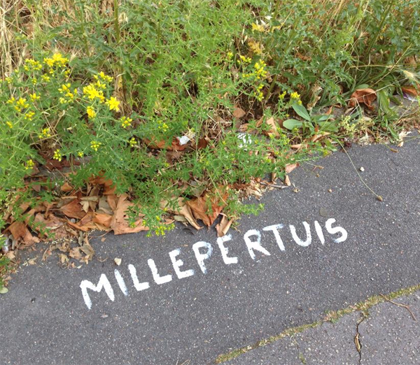 Belles-de-bitume-millepertuis2.jpg