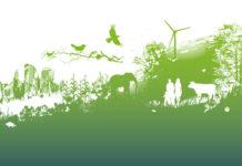 Fondation pour la recherche sur la biodiversité